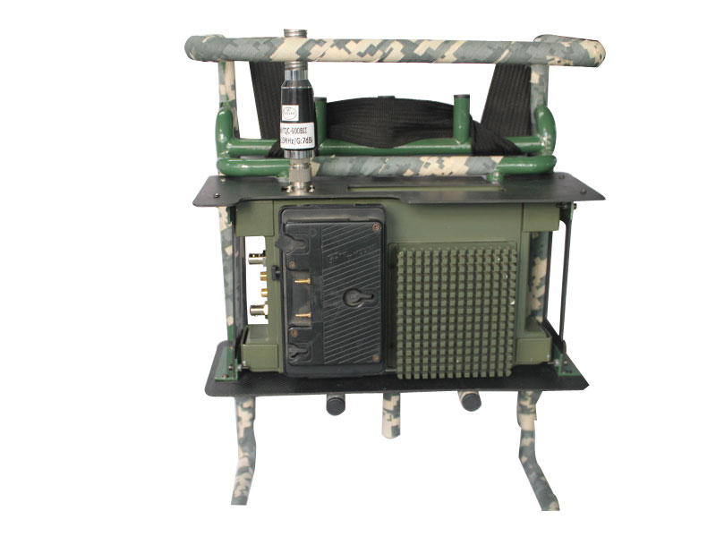 Individual-carried microwave transmission system